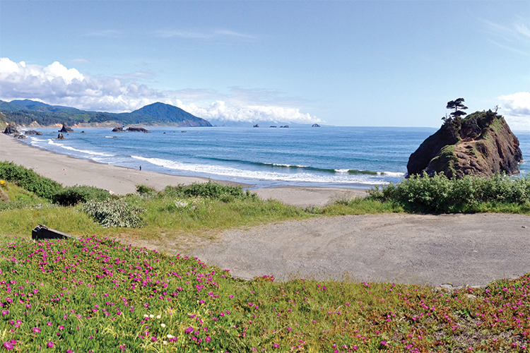 Port Orford Image