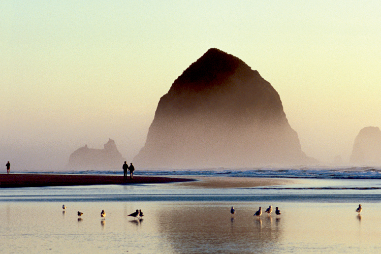 Rising 235 feet above the shoreline, Haystack Rock is a natural treasure and one of Oregon