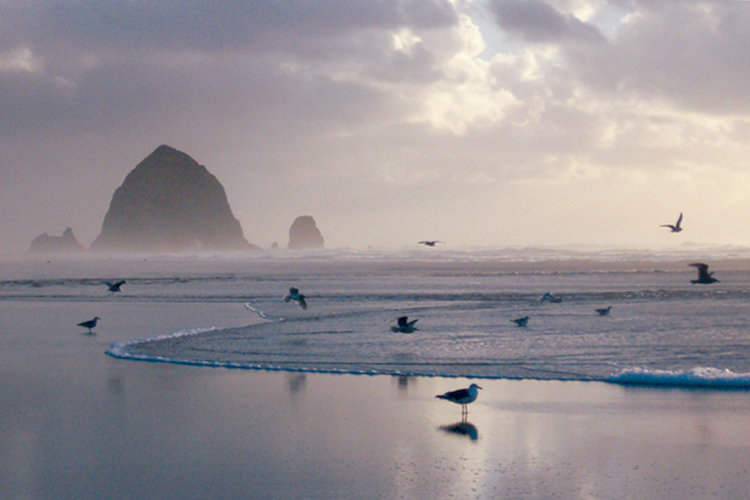 Take Advantage of the Quiet Seasons in Cannon Beach