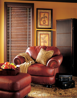 Window treatments for light control and design