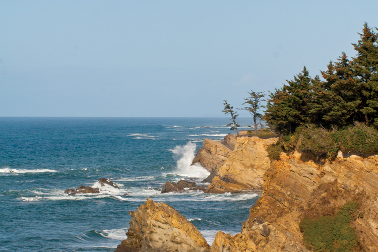 Cliffside views from Cape Arago