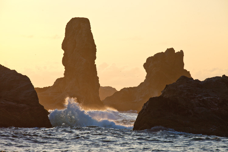 Rocky spires on the beach in Bandon Oregon