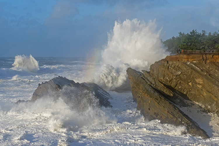 Mammoth waves make Shore Acres State Park one of the top spots for wave watching on the Oregon Coast.