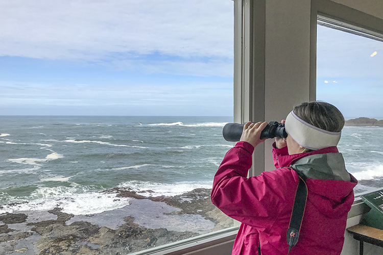 Depoe Bay is home to the Whale Watching Center and a hot spot for whale watching on the Central Oregon Coast.