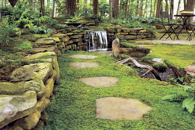 Using Moss In Pacific Northwest Coastal Gardens