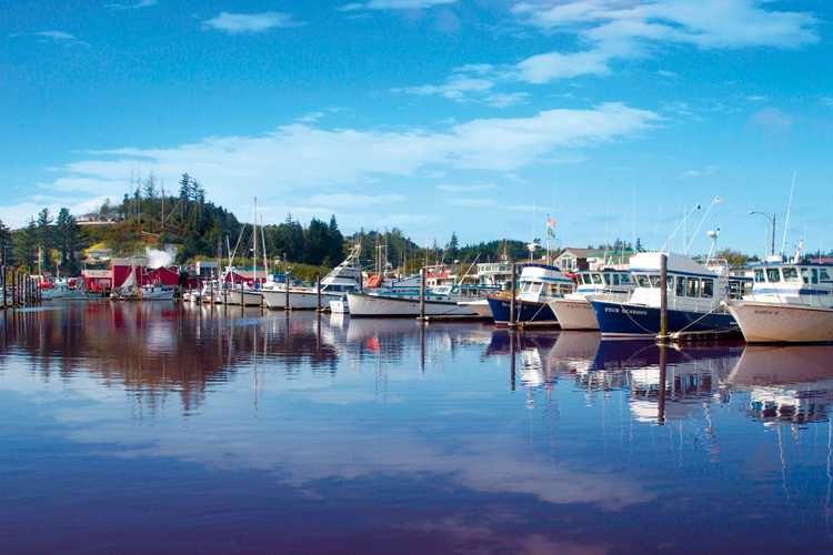 The historic Port of Ilwaco is home to both working and pleasure craft, as well as numerous shops, restaurants and galleries.