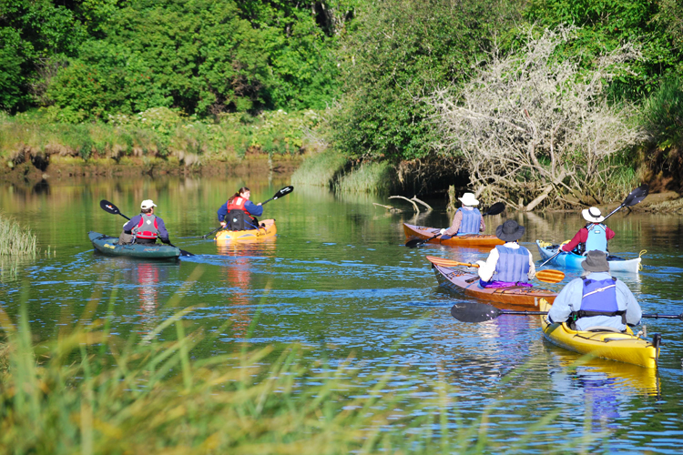 Canoe and kayak tours on siletz bay lincoln city oregon for Fishing in lincoln city oregon