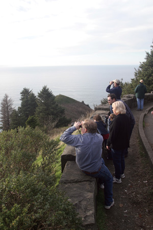 Whale watchers, with binoculars in hand, spot spouts from this viewpoint at Oswald West State Park.