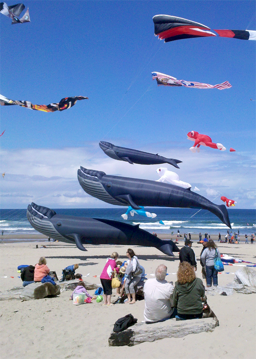 Lincoln City Hosts 29th Annual Summer Kite Fest
