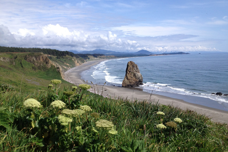 View of Needle Rock from Cape Blanco with Humbug Mountain in the background.