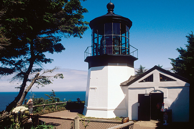 Cape Meares: Over three miles of hiking trails including short walks to the Cape Meares Lighthouse and the Octopus Tree. Panoramic views of Three Arch Rocks offshore.