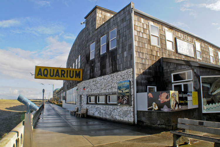 Seaside Aquarium Prices Roll Back For 75th Anniversary