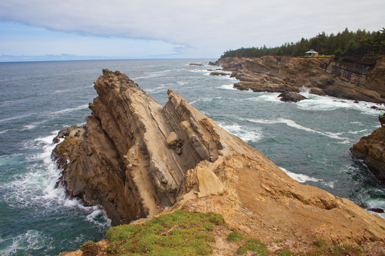 Sandstone rock formations and  sheer cliffs make for spectacular views along scenic Cape Arago trails.