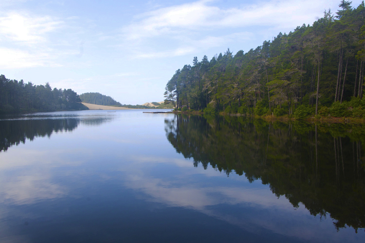 Jessie M. Honeyman Memorial State Park offers access to two miles of sand dunes, serene picnic areas, as well as swimming, boating and water sports on its two lakes.