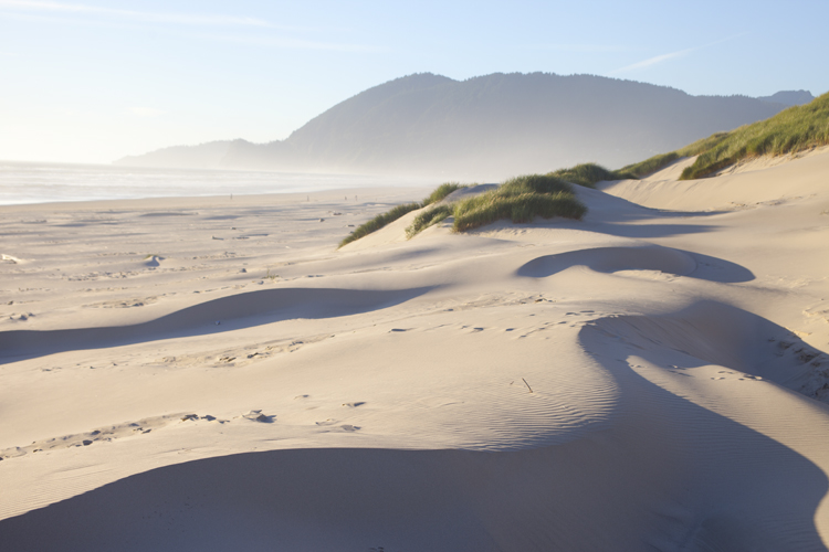Nehalem Bay State Park Features Campground And Day Use Areas On A Four Mle Long