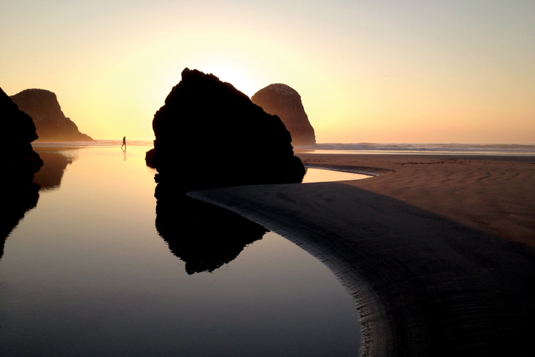 Rock formations along the Cannon Beach shoreline offer unparalleled views and are a habitat for a remarkable variety of marine and bird life.