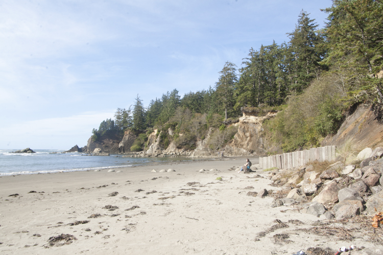 Sunset Bay State Park's small cove beach is a big attraction for swimmers, beach play or tidepool exploring.